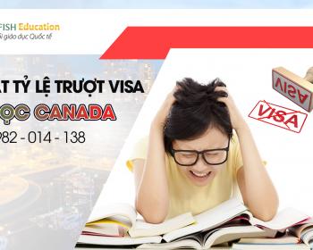 Trượt visa du học Canada