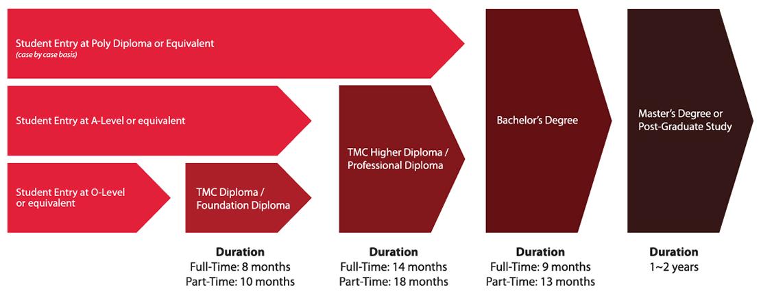 Sơ đồ lộ trình học tại TMC