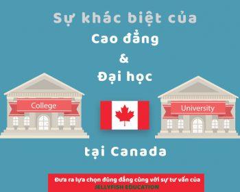 Du học Canada - Sự khác biệt của Cao đẳng và Đại học tại Canada