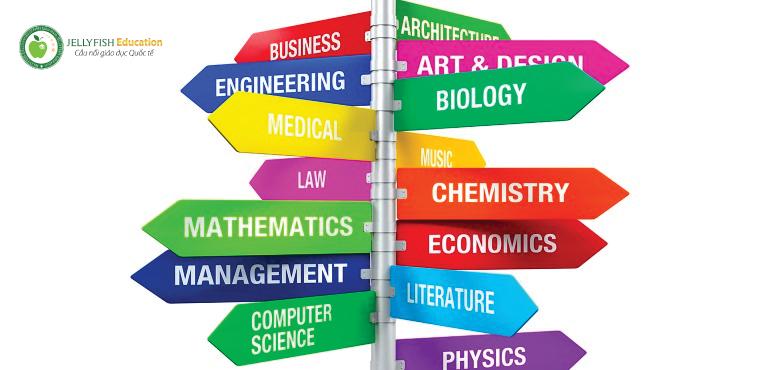 Bạn nên chia sẻ rõ ràng về ngành học để chứng minh mình thật sự thích ngành học đó